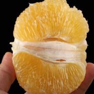 台湾葡萄柚 福建漳州柚子黄柚非西柚时令水果皮薄多汁新鲜5斤包邮
