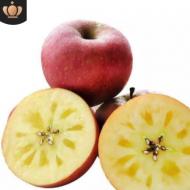 云南昭通丑苹果冰糖心苹果当季现摘丑苹果2019年新货微商一件代发