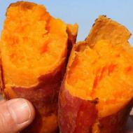山东青云山烟薯25 流油糖心 农家新鲜地瓜 烤红薯新鲜现挖批发