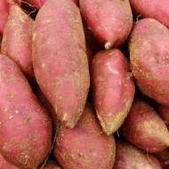 山东青云山红薯 红皮红心蜜薯 现挖现卖地瓜 番薯小地瓜一件代发