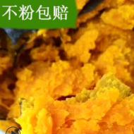 【应季网红爆款贝贝南瓜】一件代发山东板栗味贝贝小南瓜 5斤装