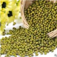 批发内蒙古赤峰特产五谷杂粮50斤一袋25kg新绿豆量大从优运费另谈
