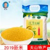 内蒙古赤峰新米小黄米农家月子米杂宝宝米5斤袋装 一件代发