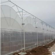 薄膜连栋温室大棚 薄膜大棚 蔬菜草莓养殖薄膜连栋大棚