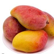 广西芒果贵妃芒中果5斤当季新鲜水果红金龙贵妃芒非甜心芒一件代