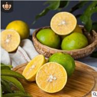产地直发广西武鸣皇帝柑9斤贡柑橘橙子新鲜时令水果批发一件代发