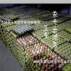 农7鸡蛋养殖户自养新鲜生态鸡蛋大量批发全国供应发货