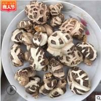 湖北随州特产白花菇干货香菇产地直销食用菌批发干货干香菇新货