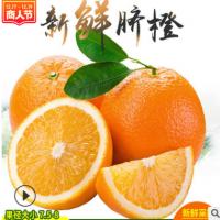 一件代发赣南脐橙全国包邮5斤橙子榨汁现摘超甜多汁5斤装赣南脐橙
