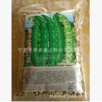 豆王架豆王红颜无筋豆种子红籽泰国无筋架豆王无筋架豆种子无纤维