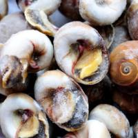 玉螺肉 香螺肉 海螺肉 火锅 自助餐螺肉 涮锅 酒店烧烤海鲜食材