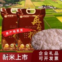 2019新米湖南石盘再生稻大米原生态真空包装米5kg新鲜大米批发
