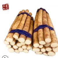 河北蠡县小白嘴山药20厘米左右山药段干面新鲜5斤比铁杆山药更糯