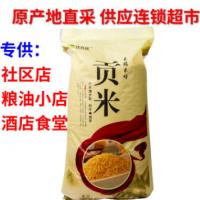 小米黄小米陕北小米米脂小米 米脂贡米25kg装批发
