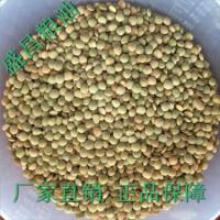 进口商直销 进口大粒绿扁豆 淀粉 食品 凉粉理想原料