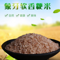 红米 营养五谷云南本土大米 五谷杂粮农家种植直销供应