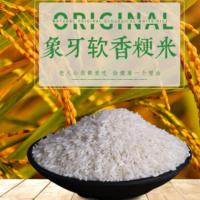 白米 营养五谷 农户种植大米 大米供应 大米直批农家米