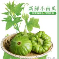 云南特色新鲜小南瓜 口感脆嫩味道鲜美小南瓜 农家种植 原产直销