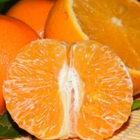 沃柑9斤装武鸣新鲜橘子当季桔子非贡柑皇帝柑春见耙耙柑丑柑 7