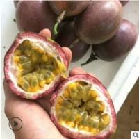 百香果当季新鲜热带水果 酸爽香甜红果百香果现摘番莲香甜鸡蛋果