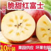 冰糖心红富士10斤装山西膜袋红富士批发新鲜苹果水果直销红富士
