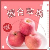 【山东烟台红富士苹果】北都庄园5斤10斤装代发包售后