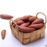 北都庄园山西特产运城红薯新鲜5斤装红薯红皮白心地瓜