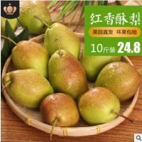 果园直销红香酥梨现摘现发新鲜水果脆甜清爽应季水果10斤红香酥梨