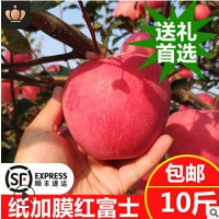 果园直销冰糖心红富士爆甜纸袋红富士批发新鲜苹果水果10斤红富士