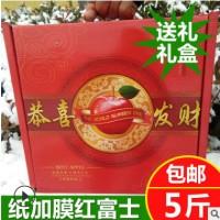 果园直销冰糖心红富士爆甜纸袋红富士礼盒装新鲜苹果水果红富士