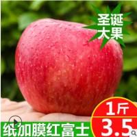 果园直销圣诞大果红富士爆甜纸袋红富士批发新鲜苹果水果红富士