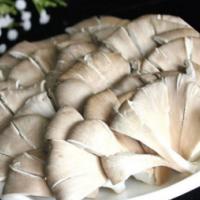 供应蘑菇,蘑菇批发量大优惠
