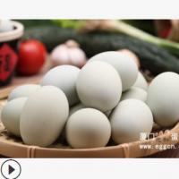 杏林阁优级散装无铅无铜含锌工艺无斑点皮蛋松花蛋变蛋240枚/箱