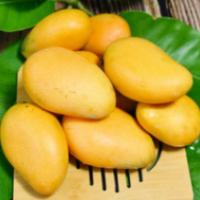 越南大青芒8斤金煌大芒果新鲜热带水果批发非凯特甜心芒一件代发