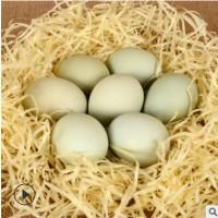 绿壳正宗新鲜农家散养绿壳蛋新鲜笨鸡蛋厂家直销苏禽鸡按箱批发