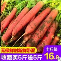 【坏果包赔】新鲜胡萝卜水果红萝卜农家蔬菜带泥无保鲜剂10斤包邮