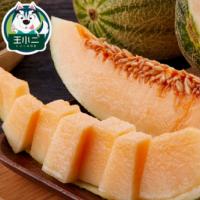 新疆哈密瓜网纹瓜蜜瓜新鲜水果整箱包邮当季10斤应季批发