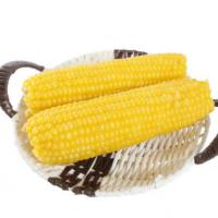 水果玉米生吃玉米 爆浆甜玉米新鲜生吃冰糖玉米厂家包邮
