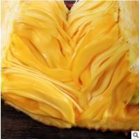 海南菠萝蜜 三亚现摘18-20斤当季水果皇后木波萝 非红肉榴莲蜜