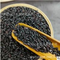 五谷杂粮黑米400g 恩施富硒黑米 五谷杂粮厂家供应基地种植黑米