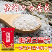 2019新米厂家直批东北大米香白香米新米10斤珍珠米农家米5kg