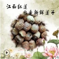 江西农家特产干货莲子广昌精选红莲自产自销现货批发莲子一件代发