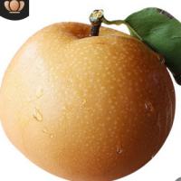 山东秋月梨净重5斤包邮 当季现摘黄皮梨 一件代发非丰水梨黄花梨