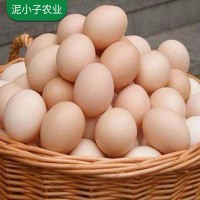 正宗农家土鸡蛋新鲜 草鸡蛋柴鸡蛋 自养笨鸡蛋30枚60枚箱装