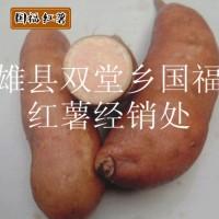 雄县沙土现挖软糯红心小红薯 食用新鲜可口软糯红心地瓜干