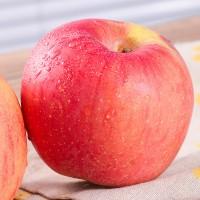 10斤装红富士苹果 山西红富士批发新鲜苹果水果直销红富士 批发