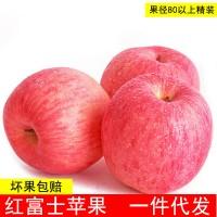 果园直销新鲜山西苹果 脆甜红富士苹果10斤装包邮 85大果一件代发