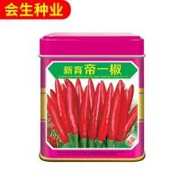 批发蔬菜种子 多种四季高产杂交朝天椒种子 小米椒种子辣椒种子