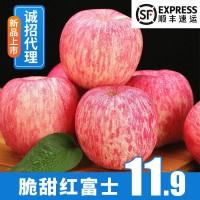 【顺丰果园直发】山西现摘红富士苹果新鲜水果批发非嘎啦可代发