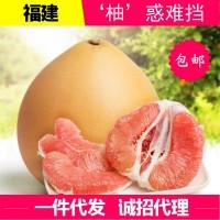 福建琯溪柚子正宗平和三红蜜柚当季现摘新鲜孕妇水果柚子10斤